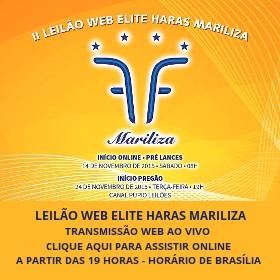 TRANSMISSÃO WEB AO VIVO